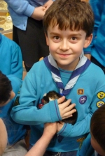 1st Woosehill Beavers make Animal Friends at Pets at Home